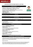 Modelo 3 - Gerador de Currículo Online Com Foto Grátis